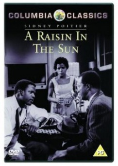 essays written on a raisin in the sun